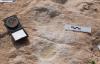 沙特发现距今12万年前的人类脚印网友:史前文明?
