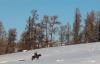 【速搜资讯】新疆快递员雪地骑马送快递:骑马来的不只王子