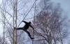 【速搜资讯】俄罗斯西伯利亚大学生为上网课:爬8米大树找信号