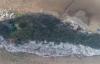 """【速搜资讯】10万只鸟把鞋山岛拉成白色:一半绿一半白像""""雪山"""""""