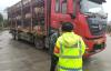 【速搜资讯】高速上惊现一头200斤的猪散步 众人合力围堵抓猪