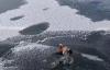 【速搜资讯】小鸭子被冻在冰面挣扎 男子精准投石破冰救出 网友:稳准狠温柔
