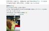 【速搜资讯】腾讯QQ忙坏了 一整头牛就是送不出去 网友神评