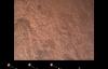 """【速搜资讯】NASA发布毅力号登陆火星视频:第一视角重现""""恐怖7分钟"""""""