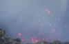 【速搜资讯】俄罗斯登山者爬火山烤香肠:现场还不断喷出熔岩
