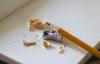 【速搜资讯】建议让学生在校内完成家庭作业 网友:那还叫家庭作业?