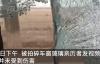 【速搜资讯】东北虎拍碎车窗亲历者发声:当时非常害怕 所幸并未受到伤害