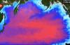 【速搜资讯】日本要求2年后能向海洋排核废水:将稀释到低于标准浓度