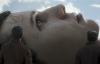 【速搜资讯】口碑崩了 《爱 死亡和机器人》第二季豆瓣评分跌至6.9