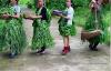 【速搜资讯】农村大妈抱自家蔬菜走秀视频火了:网友直呼走秀有趣很可爱