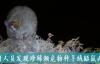 """【速搜资讯】人称""""雪山飞狐""""!云南发现羊绒鼯鼠新物种"""
