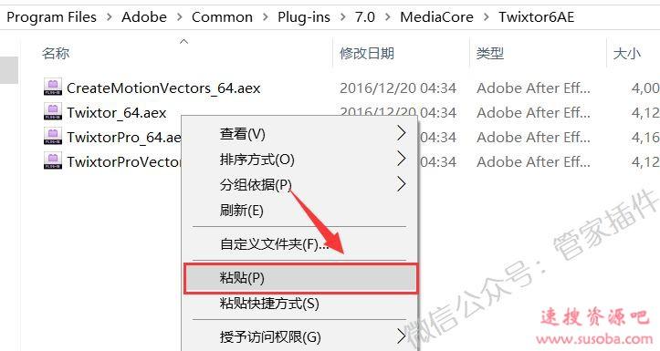 AE插件『Twixtor』下载与安装教程