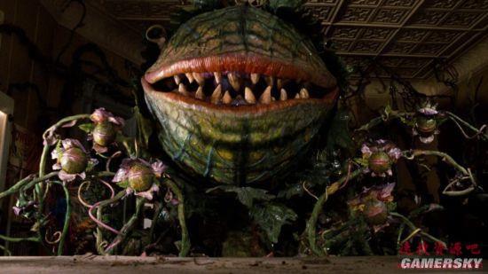 克里斯·埃文斯&斯嘉丽·约翰逊有望共同出演喜剧恐怖电影《恐怖小花》