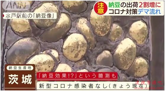 日本人疯抢的纳豆是个啥?能抗新冠病毒?