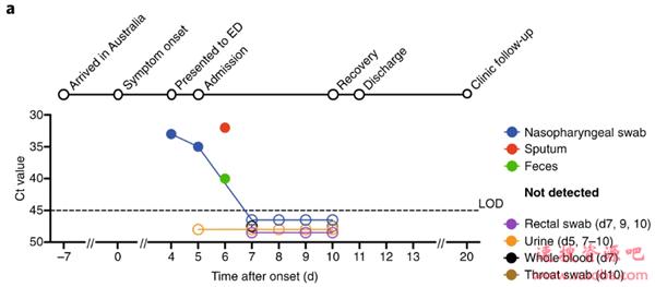 澳大利亚研究人员首次披露人体免疫系统对抗新冠病毒过程:与流感存在相似性