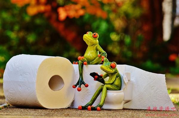 厕纸也成珍宝!澳大利亚一卷厕纸拍出天价