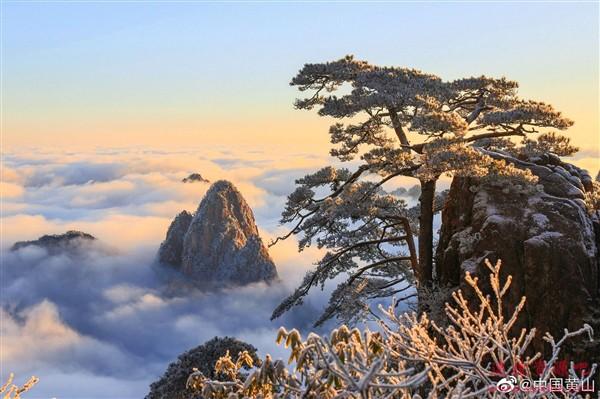 一大早被2万游客挤爆:黄山景区宣布五大措施