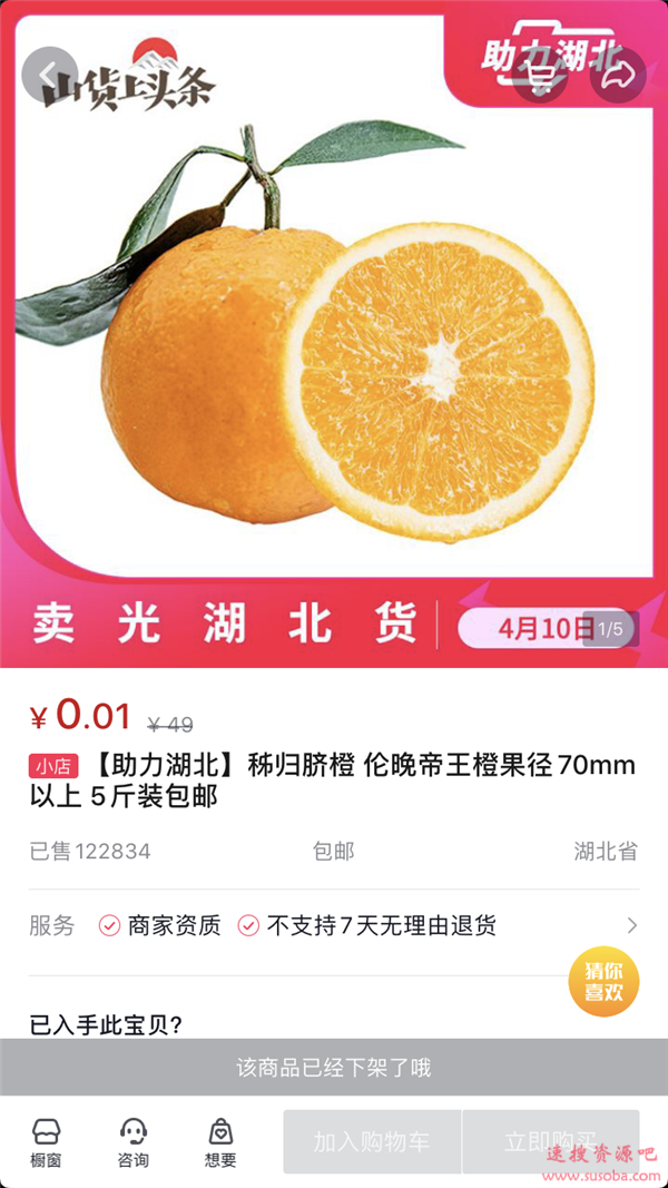 等于白送!罗永浩1分钱卖橙子秒光:有一个烂的就别来闹了