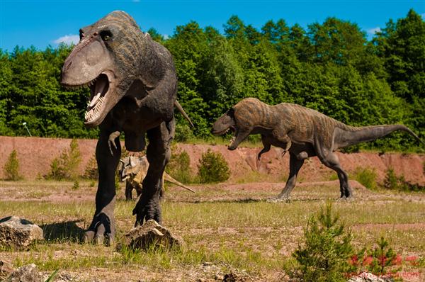 科学家发现地球历史上最危险的地方 充满凶猛的食肉动物