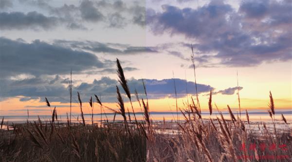 下一代小米AI相机曝光:完全替代滤镜 8K视频成主流