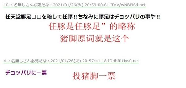 """【速搜资讯】真实黑 日本网友募集任天堂粉丝新蔑称 """"猪脚""""得票高"""