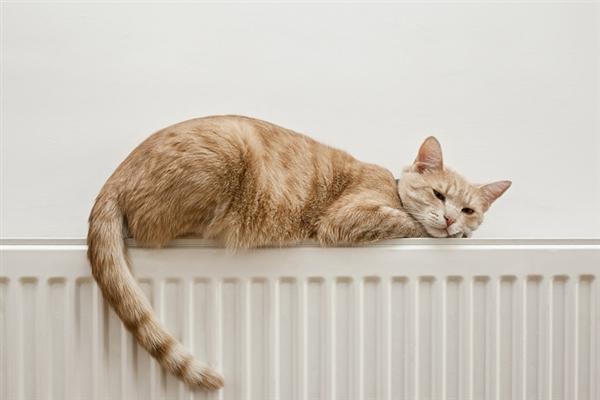 【速搜资讯】空调如此全能 为什么我们只会用它制冷?