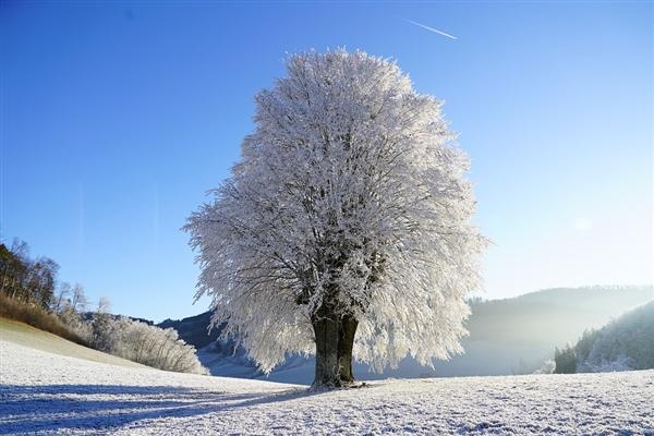 【速搜资讯】江苏成为全国冬季用电负荷最高省份 南方网友:没有暖气只能用电