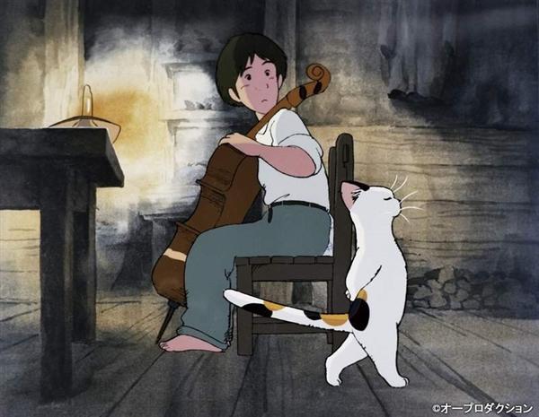 【速搜资讯】网友晒自家猫吃饭的样子 网友:像个啤酒肚大叔