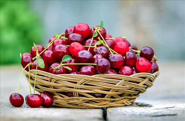 【速搜资讯】冷链食品频繁中招!疾控专家支招:车厘子等进口水果这样清洗