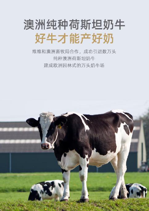 【速搜资讯】中国企业500强:维维暖小牛酸奶24盒49.9元
