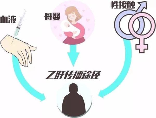 【速搜资讯】经常在外吃饭 容易被传染乙肝?真相没那么简单